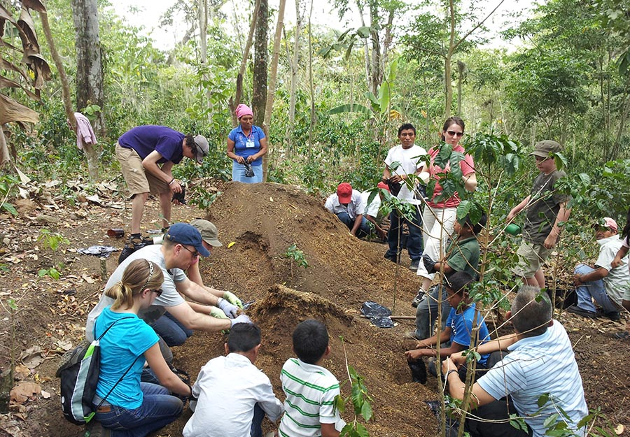 ELM attorneys, their families, and members of Agroaldea San José pack seedlings of a fungus-resistant breed of coffee into containers for shipping.